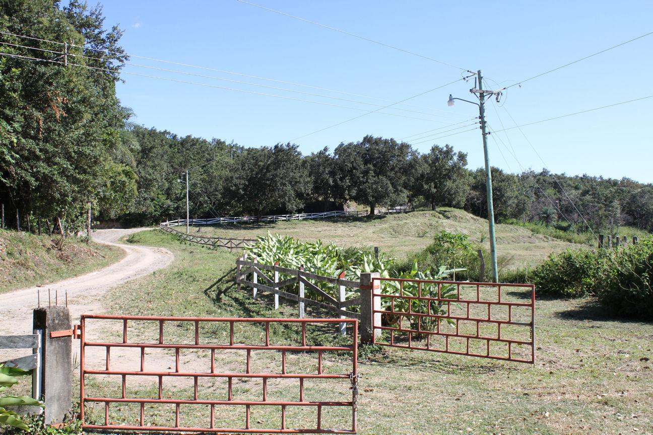 Farm 115 ha San isidro de Limonal 8
