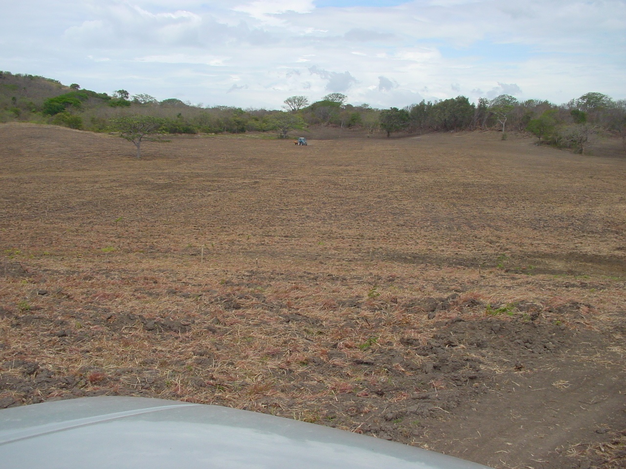 Farm of 395 hectares - San Isidro 14